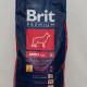BRIT Premium Adult  Large L_2