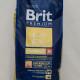 BRIT Premium Junior M_2