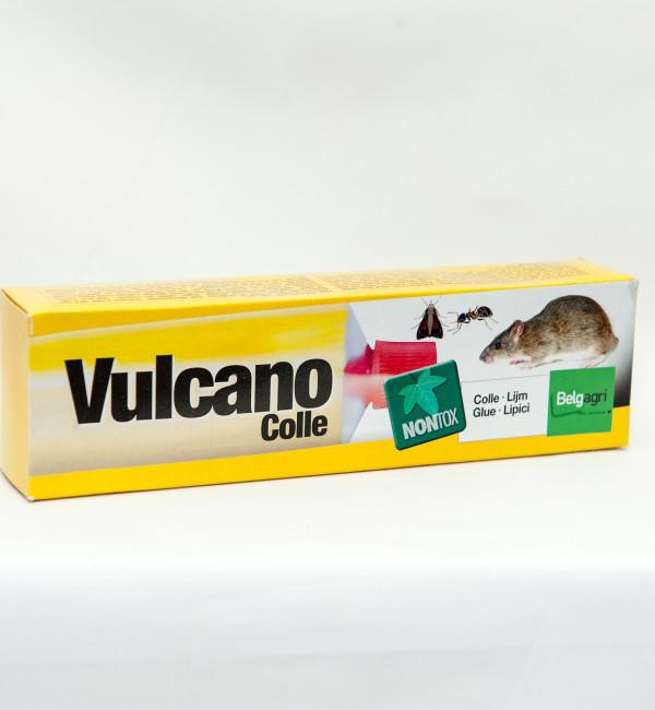 Vulcano clei